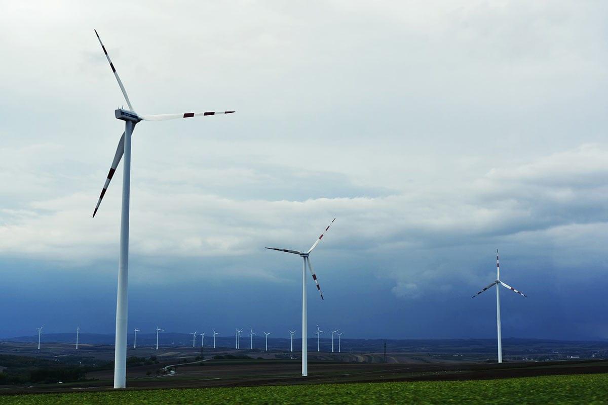 100% skuteczności wkonkursie naodnawialne źródła energii!